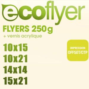 Ecoflyer 250g Quadri Recto/Verso